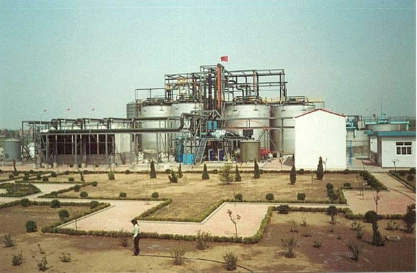 bioleach Gold plant china 2001